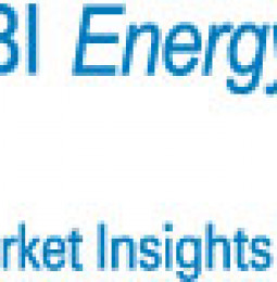 Investment Shift for Algae Biofuels, Market to Grow 43.1% Annually Through 2015: SBI Bulletin