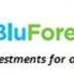 BLUFOREST INC.: 30:1 Rollback Effective 1/23/2013