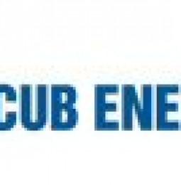 Cub Energy Inc. Commences Drilling of Olgovskoye-24 Well
